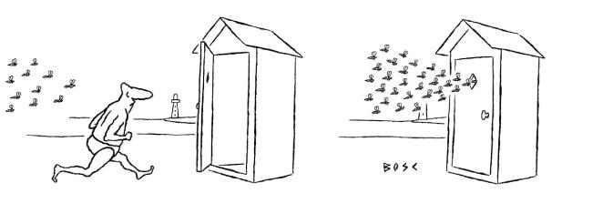 Bosc - abeilles