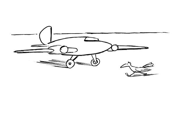 Bosc - avion-oiseau