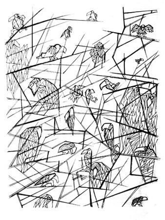 Bosc - oiseaux-forme