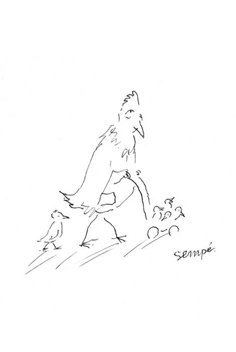Jean Jacques Sempé - poulet-poussette