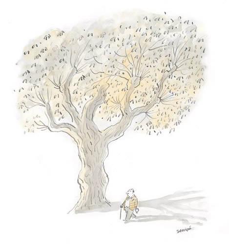Jean Jacques Sempé - sous-arbre