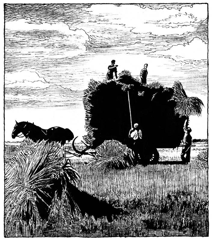 dessin-page-116