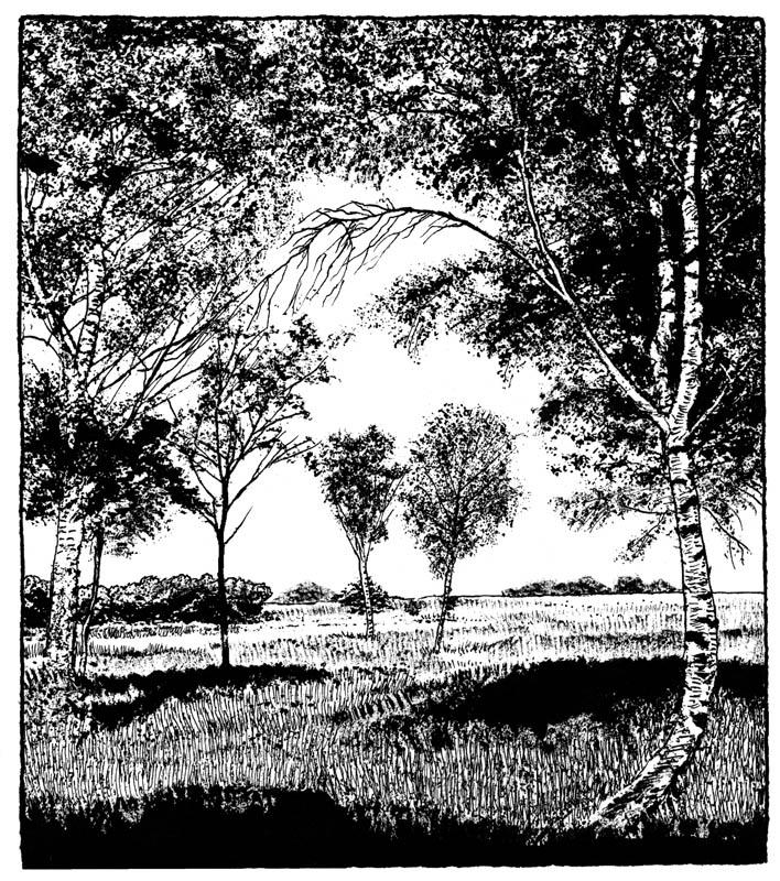 dessin-page-138
