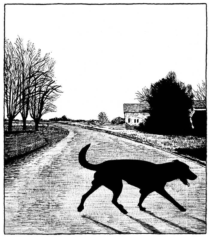 dessin-page-175