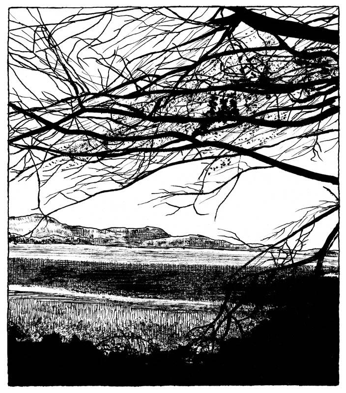 dessin-page-205